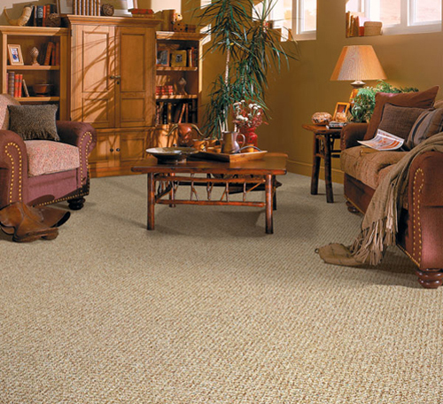 Wool Berber Carpet Flooring Options